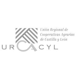publicidad urcacyl
